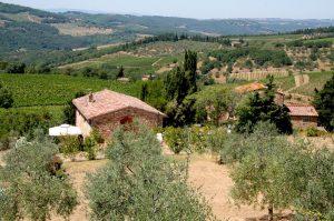 """""""Agriturismo Felciano"""" appartement de vacances près de Panzano in Chianti."""